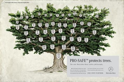 tree safety family tree safety philosophy print ad