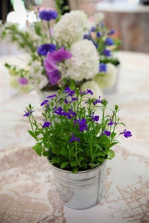 61 cutest potted plants ideas for your wedding happywedd