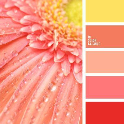 colors that match pink wedding summer and dr who on pinterest