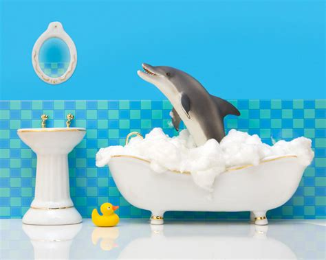 Bathroom Dolphin by Bathroom Decor Dolphin Bathroom Decor By