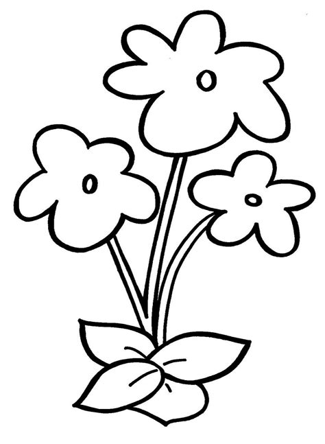 flowers printing pages creative children