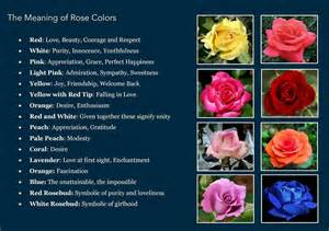 color meanings of roses meaning of colors witch stuff