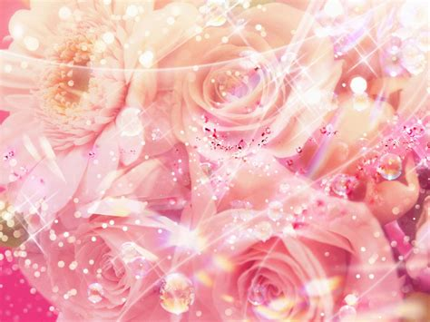 wallpaper pink elegant 29 roses backgrounds wallpapers images pictures