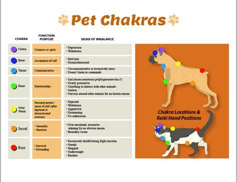 dog cat  chakras printable charts pet reiki hand positions