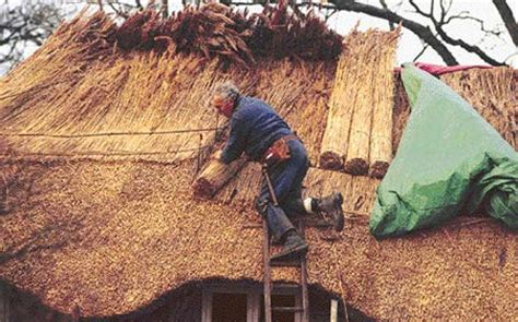 Tiki Hut Definition Thatching D 233 Finition What Is