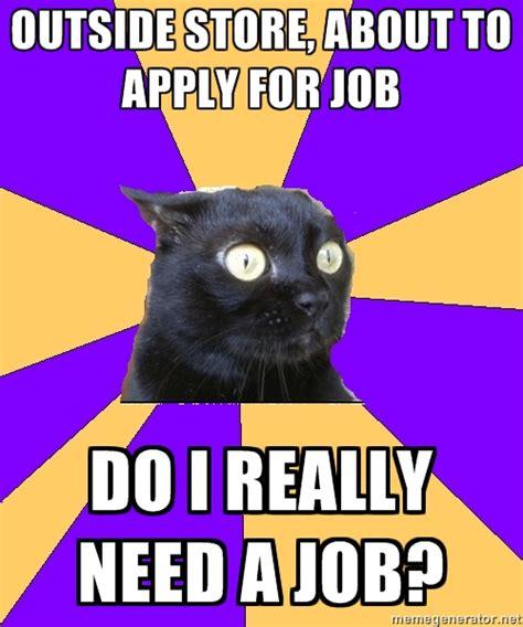Anxiety Cat Memes - anxiety cat 3