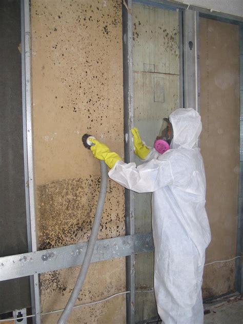 bleach  bathroom mold removal