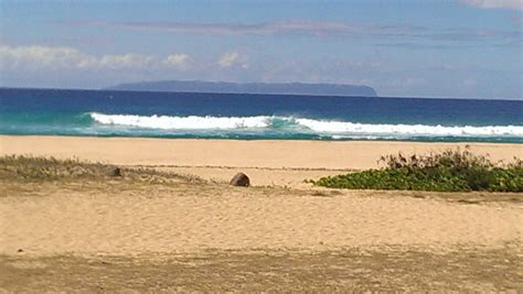 barking sands cottages kauai u s cgrounds and rv parks review for