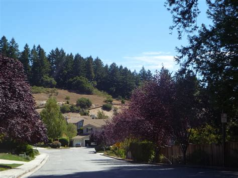monte fiore monte fiore gated community in scotts valley homes for sale