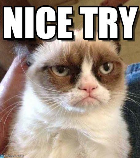 Good Try Meme - nice try grumpy cat reverse meme on memegen