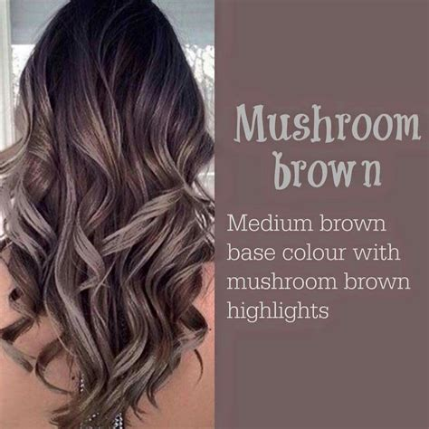prices for cut dye highlights mushroom brown higlight hair color ideas 2017 may