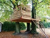 Construire Une Cabane Dans Les Bois Interview