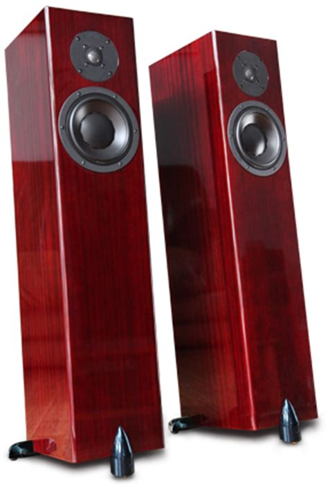 coppia casse acustiche totem acoustic forest signature