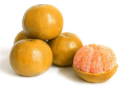 Nutrisari Jeruk Manis 250 Gram kebaikan yang bisa didapat jika rutin konsumsi jeruk