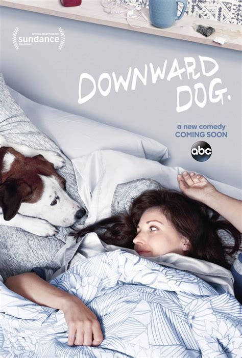 downward cancelled comedy downward cancelled by abc news source
