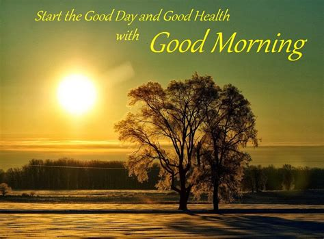 Morning Quotes 25 Lovely Morning Quotes A House Of