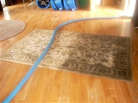 area rug cleaning ri merle s steam clean carpet cleaning bemidji and grand forks specializing in water and