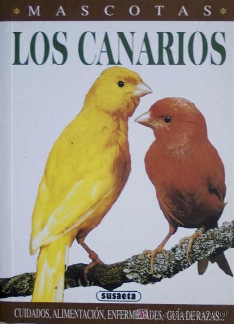 razas de canarios en venta wwwsemilleriaebjcom los canarios cuidados alimentaci 243 n enfermedades comprar