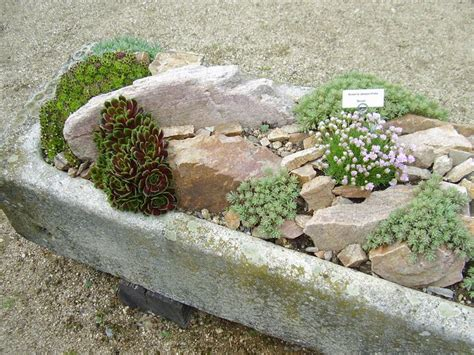 rock for gardens where to buy 25 best stuff to buy images on landscaping ideas backyard ideas and landscape design