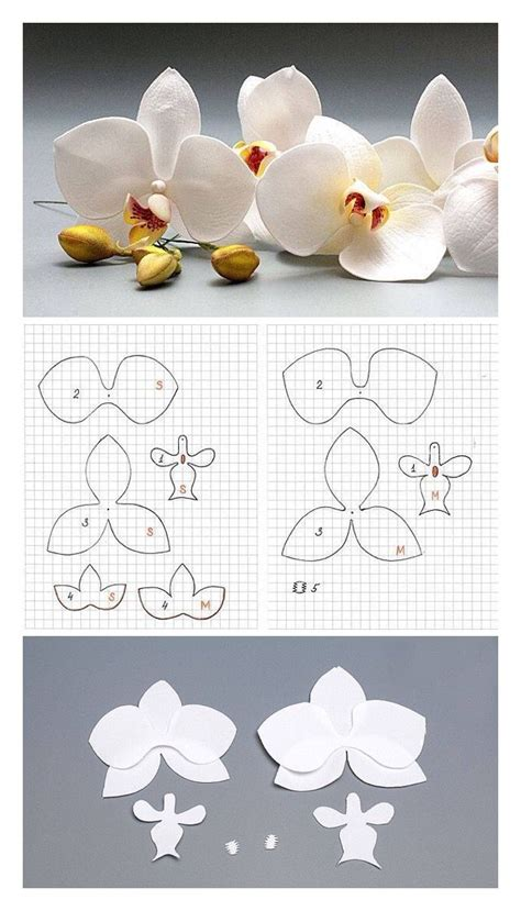 paper orchid flower pattern pattern orchid by oton franca oliveira flower