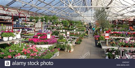 interior of commercial plant and flower garden center shop