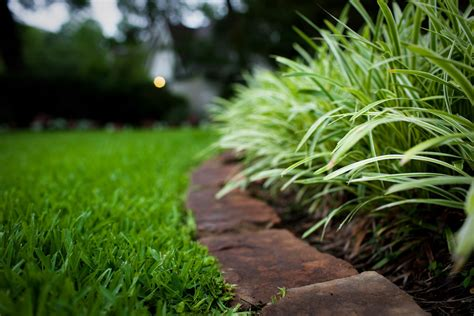 what are reasonable lawn care service prices