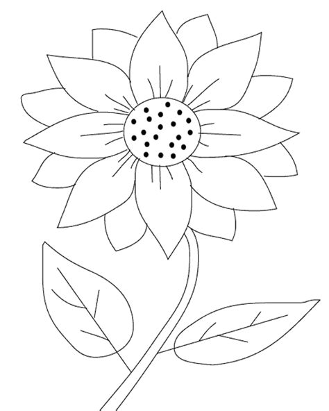 printable sunflower images free coloring pages printable sunflower coloring pages