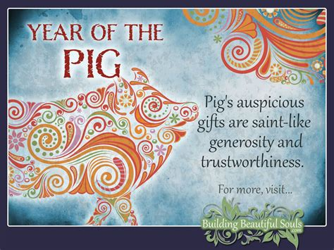 chinese zodiac pig year of the pig chinese zodiac
