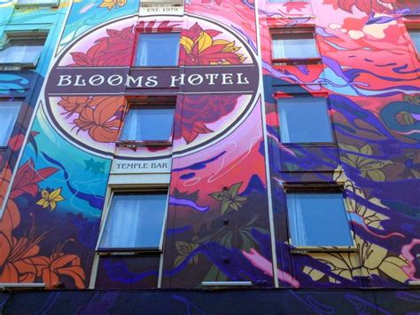 graffiti wallpaper dublin best 25 blooms hotel dublin ideas on pinterest blooms
