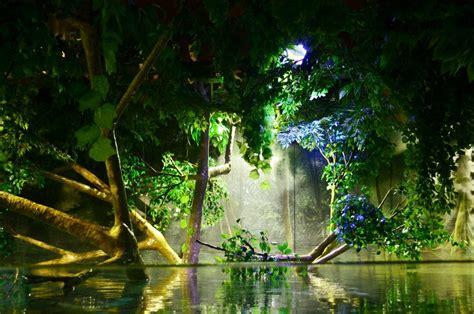 aquarium led beleuchtung aquarium led lighting fotos orphek