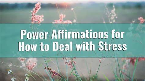conquer your mind 307 affirmations to create confidence wealth fulfillment freedom to finally live the you want books positive affirmations for stress free audio