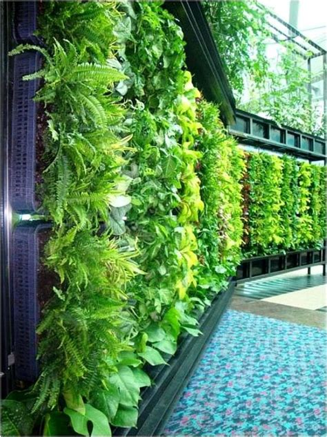 home vertical garden diy thursday 10 vertical gardens for your home