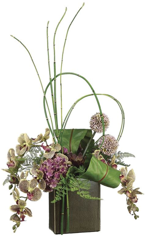 phalaenopsis orchid bird nest fern and bamboo arrangement
