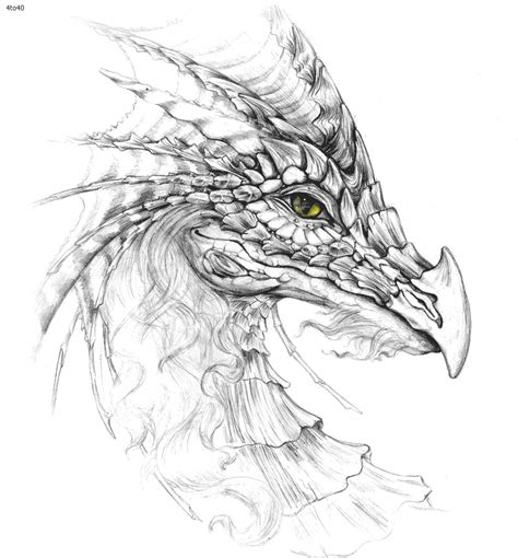 free coloring pages of face of a dragon