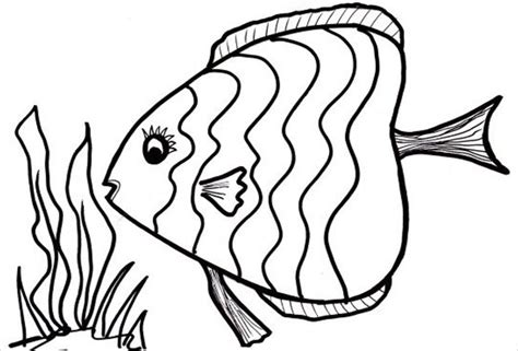 Fish Coloring Page With Scales | 9 fish coloring pages jpg ai illustrator download