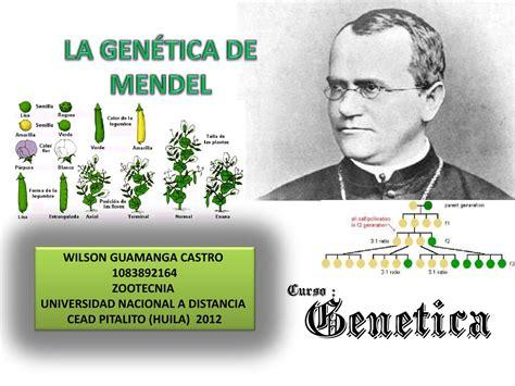 la herencia de pedro la genetica de mendel by wilson guamnga issuu