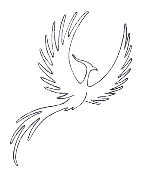 phoenix tattoo no outline phoenix outline by ice biker rad things to make
