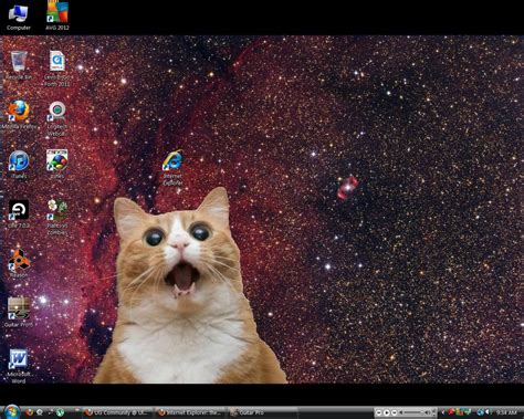 cat wallpaper imgur internet explorer the most feared icon of your desktop