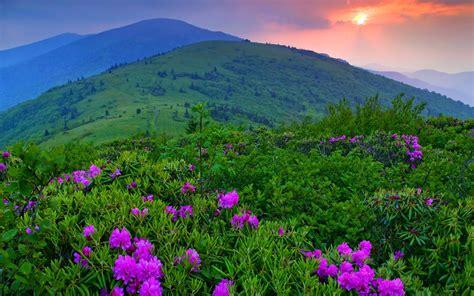 imagenes bonitas de paisajes para portada banco de im 193 genes 20 fotograf 237 as de paisajes para la