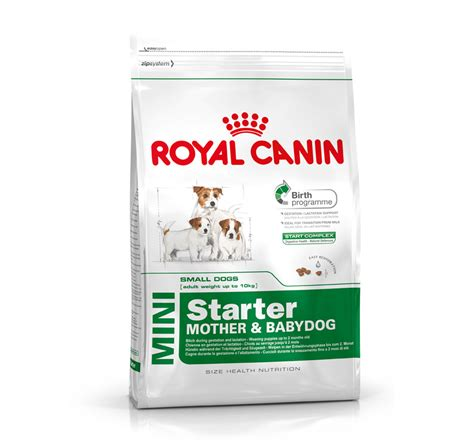 royal canin royal canin mini starter 3 kg dogspot pet