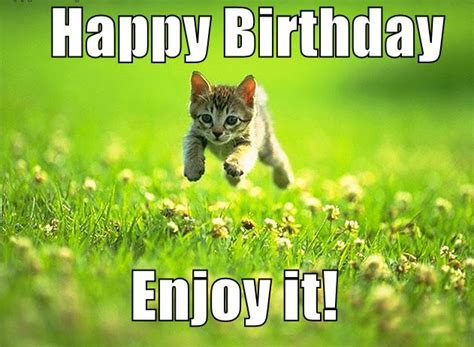 Cute Birthday Meme - funny cute happy birthday memes good morning images
