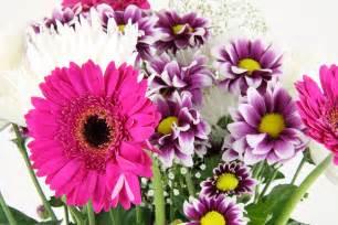 Flower bouquet free stock photo public domain pictures