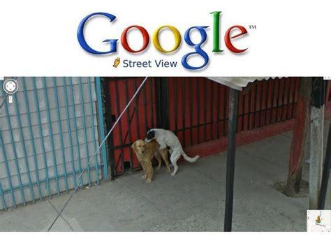 google imagenes locas las im 225 genes m 225 s locas de google street view 187 muycomputer