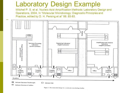 layout microbiology laboratory design molecular laboratory design ppt video online download