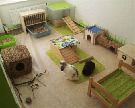Living Room Ideas Habitat Rabbitat Heaven Ideas To Make Your Rabbit S Living Space