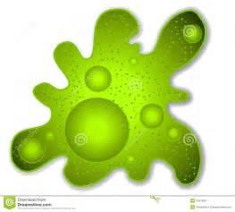 Kitchen Color Themes - green amoeba microbe clip art royalty free stock photo image 3167635