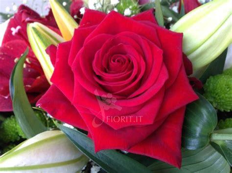 www fiori it buon compleanno con e orchidee acquista