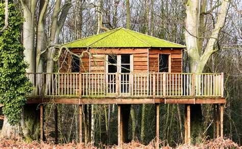 adult tree house plans adult tree house plans design of your house its good idea for your life