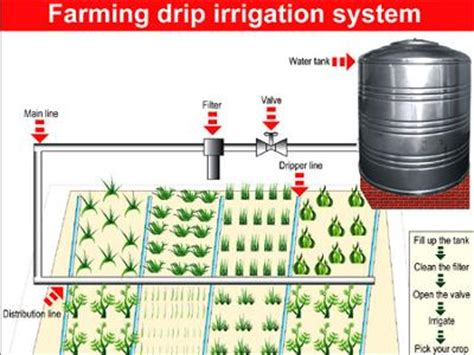 layout of drip irrigation system pdf homemade drip irrigation system pdf homemade ftempo