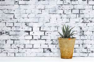 Wall Murals textures collection